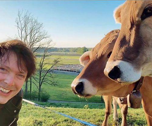 Zahlreiche Internetnutzer wollen derzeit nur eines: Kühe küssen. Auch Castl-CEO Marnus Flatz (oben) stürzt sich ins Rennen.obs/Castl AG