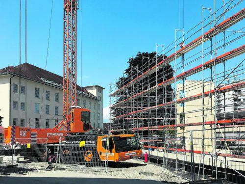 10 Meter hohe Holzelemente wurden gesetzt.
