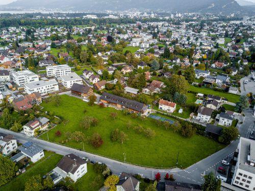 Das Verfahren um den Harder Grundstückskauf zieht sich seit Jahren. Eine rasche Entscheidung ist nicht in Sicht. VN/PAULITSCH