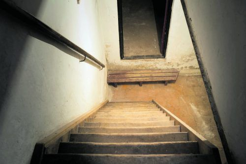 Der Keller ist vor allem im Sommer schimmelanfällig.foto: Shutterstock