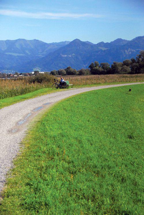Der Polderdamm an der Fußacher Bucht ist seit vielen Jahren ein beliebtes Ausflugsziel für Radfahrer.