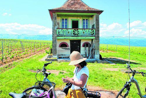 Eine kurze Pause in den Weinbergen,bevor es weitergeht zur Weinprobe.