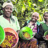Mitmachen im Einsatz für fairen Handel