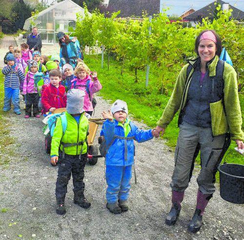 Im Rheinhof-Kindi vom BSBZ in Hohenems lernen die Kinder hautnah, wo unsere gesunden und regionalen Lebensmittel herkommen – und das mit viel Spaß.