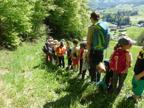 In den Naturparkschulen lernen die Schülerinnen und Schüler, ökologische und kulturelle Zusammenhänge zu begreifen. Naturparkschule Hittisau