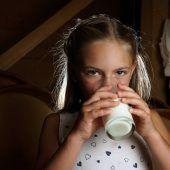 Auch Milchprodukte sind Zuckerfallen