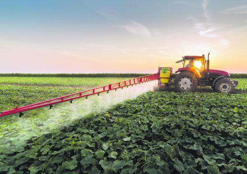 Pestizide und Monokulturen vernichten natürliche Kreisläufe und führt zu einer massiven Zerstörung des fruchtbaren Bodens.