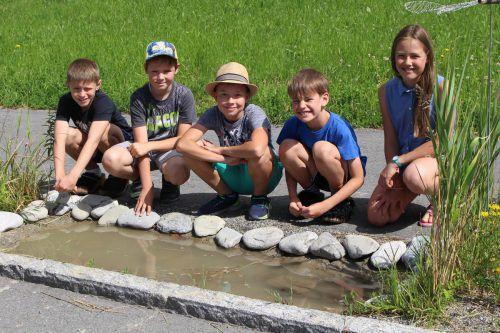 Unter anderem wurde in Lingenau auch ein Biotop angelegt.