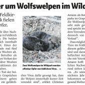 Trauer um Wolfswelpen