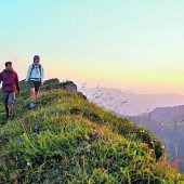 """<p class=""""infozeile"""">               bergwelt zum sehen und zum              </p><p class=""""infozeile"""">               staunen auf dem diedamskopf              </p><p class=""""infozeile"""">Mit der einzigartigen Aussicht auf über 300 Berggipfel gehört der Diedamskopf zu den schönsten Ausflugszielen in der Dreiländerregion. Hinauf geht es mit der Diedamskopfbahn ab Au-Schoppernau. Neu ab diesem Sommer ist die Ausstellung am Berg """"Bergwelt zum Sehen und Staunen"""". In Zusammenarbeit mit der inatura werden Einzigartigkeiten der Region, die Entstehung der Alpen und vieles mehr sichtbar gemacht. Die tierischen Bewohner werden interaktiv unter die Lupe genommen und spielerisch erlebbar gemacht. Die Ausstellung ist täglich bei Bahnbetrieb und bei jeder Witterung geöffnet.</p>"""