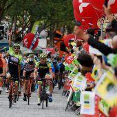 Visconti vereitelte Team-Vorarlberg-Sieg