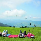 """<p class=""""infozeile"""">               der sommer auf der niedere steckt voller überraschungen             </p><p class=""""infozeile"""">Überraschend vielseitig ist der Sommer auf der Niedere. Hier bietet sich ein atemberaubender Ausblick vom Bodensee bis in die Bregenzerwälder, Allgäuer und Schweizer Berge. Gemütlichen Familien-Wanderspaß bietet der eineinhalbstündige Panoramarundwanderweg mit vielen Info-Tafeln. Außerdem können die Paraglider beobachtet werden, die wie Schmetterlinge ins Tal schweben – auf der Niedere finden Flugbegeisterte eines der beliebtesten Fluggebiete im Ländle. Für das leibliche Wohl und gemütliche Verschnaufpausen sorgen die urigen Berg-Restaurants und die bewirteten Alpen.</p>"""