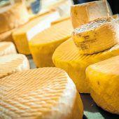 Lokaler Käse direkt von der Farm