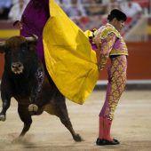 Auf Mallorca geht der Stierkampf weiter