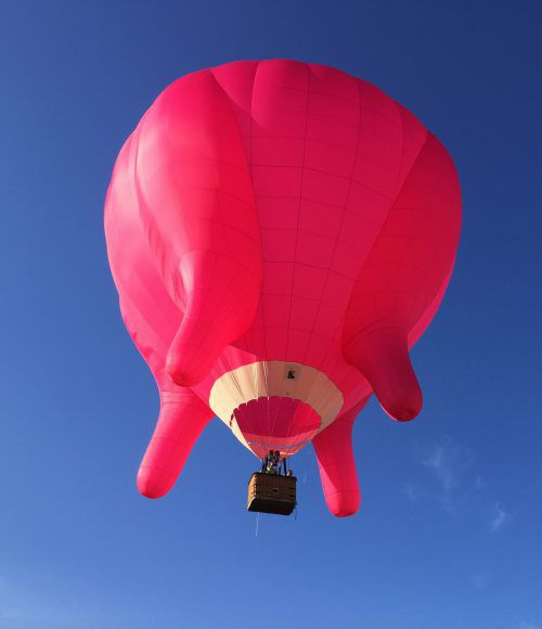 Gestern Abend stieg der pinke Heißluftballon am Bregenzer Seeufer in die Lüfte. Michel