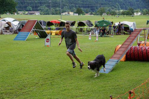 Hund und Hundehalter sollten dieses Wochenende in Hörbranz in Bestform sein. agility