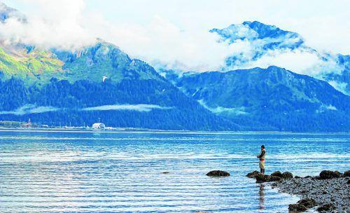 Im Kenai und im Russian River tummeln sich riesige Lachse.