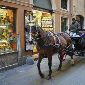 Italien will Pferdekutschen von Straßen verbannen