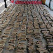 Zoll beschlagnahmt Rekordmenge Elfenbein