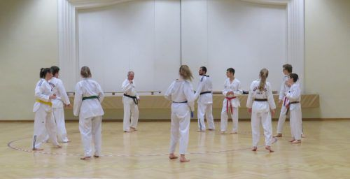 Montags und freitags trainieren die insgesamt rund 80 Mitglieder des Bludenzer Taekwondovereins. Huber