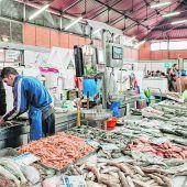 Fischerei als Lebensgrundlage