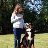 Hundesportler helfen Haltern