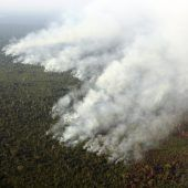 Lage im Amazonasgebiet prekär