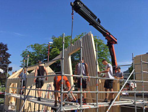 Der junge neue Vorstand der Vorarlberger Holzbau-Kunst zimmert an der Zukunft für ihre Branche.FA/HBK
