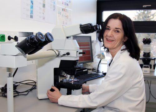 Gabriele Hartmann ist Keimen wie dem Carbapenem-resistenten Bakterium auf der Spur. vlk