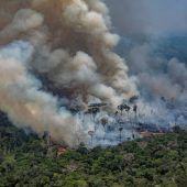 Über 1000 neue Brandherde