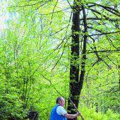 Fortsetzung der Geschichte Erholung im Spreewald von Seite G1