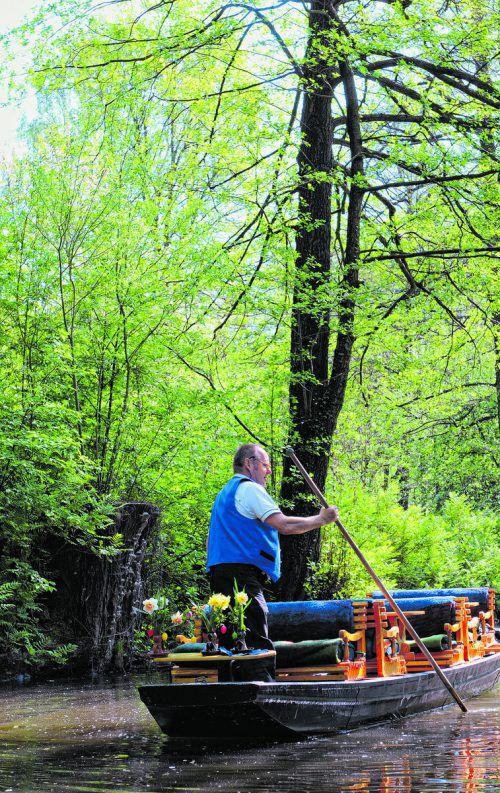 Noch heute gibt es mehrere Kahnfahrmänner und -frauen, die Touristen durch den Spreewald führen. Shutterstock (5)
