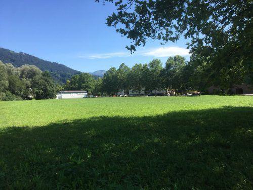 Noch ist das Gelände mitten in Dornbirn Kastenlangen eine Wiese, geplant ist dort eine Wohnanlage. VN/pes