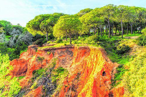 Sandbänke, Dünen und Waldgebiete prägen das Bild im Naturpark Ria Formosa.