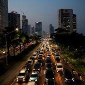 Indonesien plant eine neue Hauptstadt im Dschungel