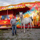 Endlich Manege frei für den Circus Berlin in Lustenau