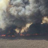 Mehr als vier Millionen Hektar Land in Bolivien verbrannt