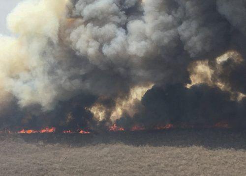 Allein in der Region Santa Cruz seien drei Millionen Hektar Fläche vernichtet worden.