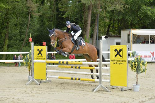 Auch Domingo mit Reiterin Angela Hofstädter sind beim dreitägigen Turnier mit dabei.hofstädter