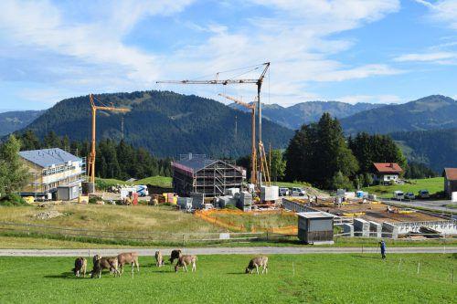 """Auf einer Grundstücksfläche von 10.000 m² entsteht in Schetteregg das neue """"Fuchsegg"""". mo"""