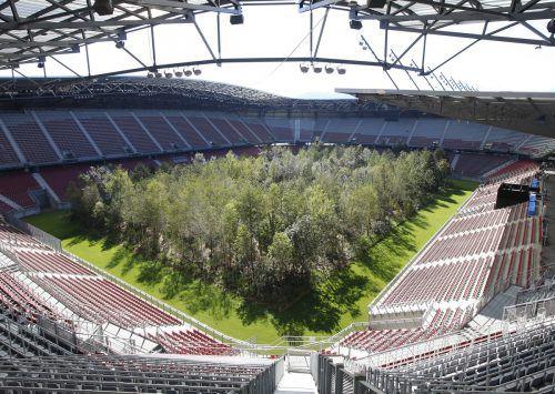 Bei dem Projekt wurden fast 300 bis zu 14 Meter hohe Bäume ins Stadion gestellt, die einen europäischen Mischwald darstellen. apa