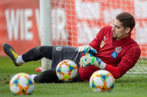 Cican Stankovic macht sich Hoffnungen auf seinen ersten Einsatz im ÖFB-Nationalteam. Aber mit Pavao Pervan und Alexander Schlager hat er starke Konkurrenz.Gepa