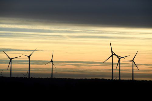 Damit der Ausbau erneuerbarer Energieträger nicht ins Stocken gerät, braucht es eine Übergangslösung. APA