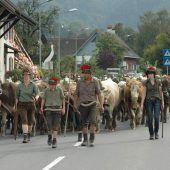 Heimkehr von den Vorderländer Alpen