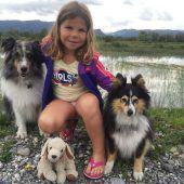 Hundesportler starten in die Herbstsaison