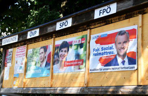 Der österreichische Wahlkampf ist in vollem Gange.APA
