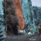 Waldbestände Afrikas bedroht