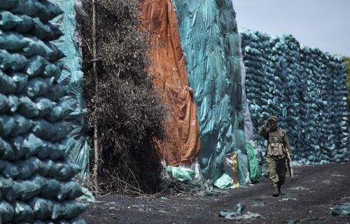 Die Nachfrage nach Holzkohle ist enorm, der Handel lukrativ. AP