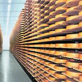 BERTSCHfoodtec: Anlagen für restlose Rohstoffverwertung in der Milchwirtschaft