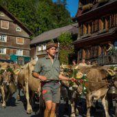 Die Stars der Alpen sind wieder zu Hause